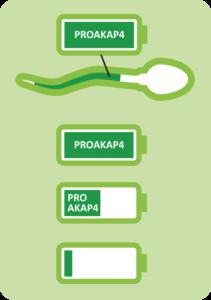 4biodx-spermato-batterie_ok